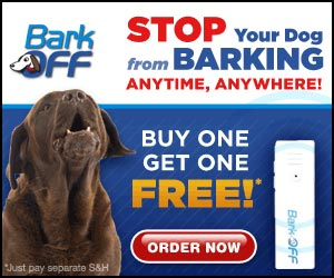 Stop your dog from barking anytime, anywhere.  Click here for details...